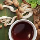 Makkelijk Recept Voor Magic Mushroom-Thee