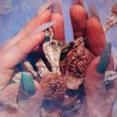 Wie Is Terence McKenna: Een Pionier Van Psychedelica En De Tegencultuur