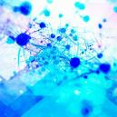 Psilocybine Bevordert De Aanmaak Van Nieuwe Hersencellen